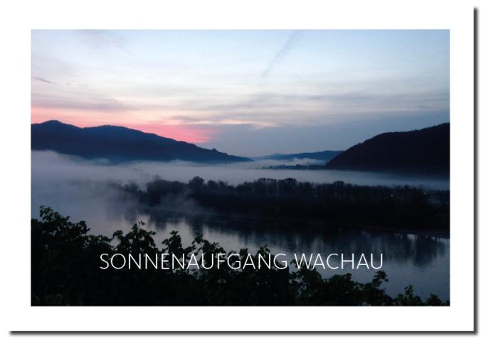 MFMR_Sonnenaufgang_Wachau