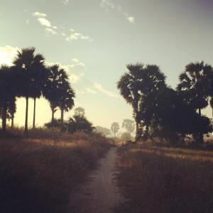Baganlandscape